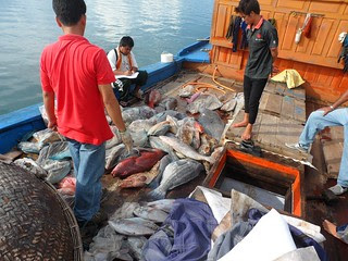 Vietnamese fishermen arrested in Jolo