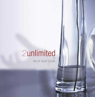 Pin-Up Went Down 2 Unlimited album