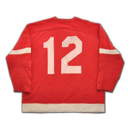 Detroit Red Wings Abel F jersey, Detroit Red Wings Abel F jersey