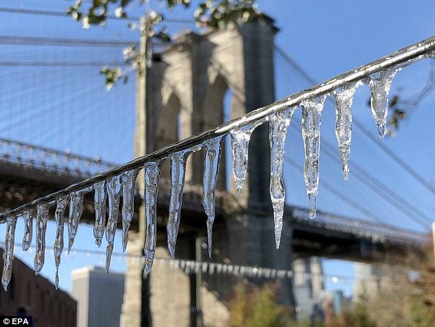Las bajas temperaturas récord se registraron en Nueva York el sábado gracias a un período frío a principios de noviembre.  La imagen de arriba muestra carámbanos formando sobre una cerca en Brooklyn Bridge Park