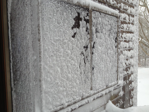 frozen windows.jpg