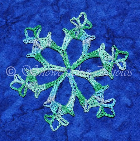Renewal Snowflake