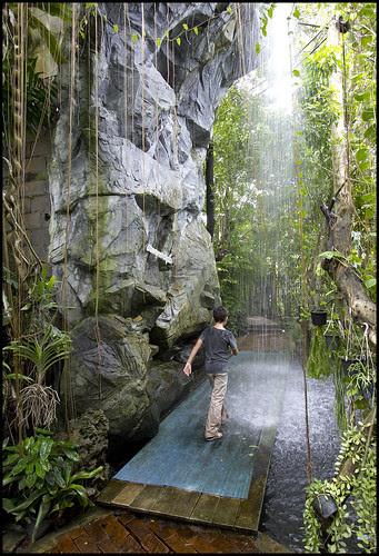 Rainforest Waterfall at Phuket Botanic Garden