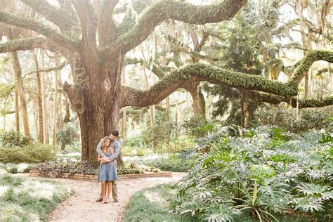Washington Oaks Gardens Engagement   Happily Ever After