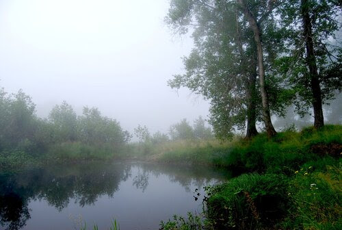 река Уфа в тумане