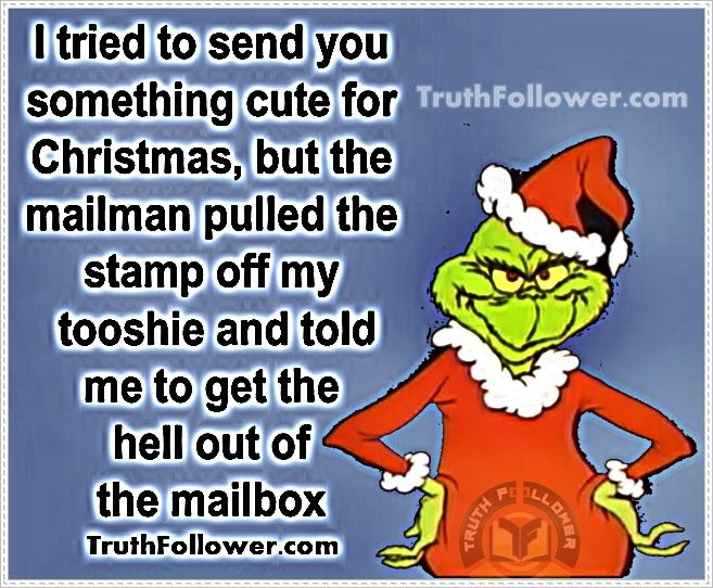 I Tried To Send You Something Cute For Christmas Funny Quote