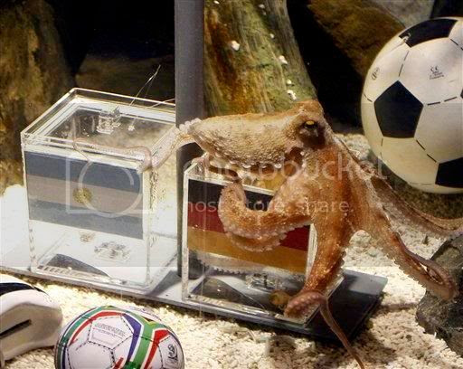 Paul,Oracle Octopus,World Cup