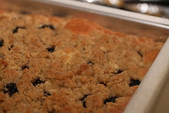 Blackberry Crumb Bars (Everyday Food)