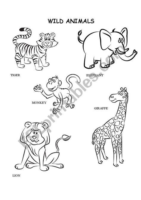 wild animals coloring esl worksheet  kalaquendi