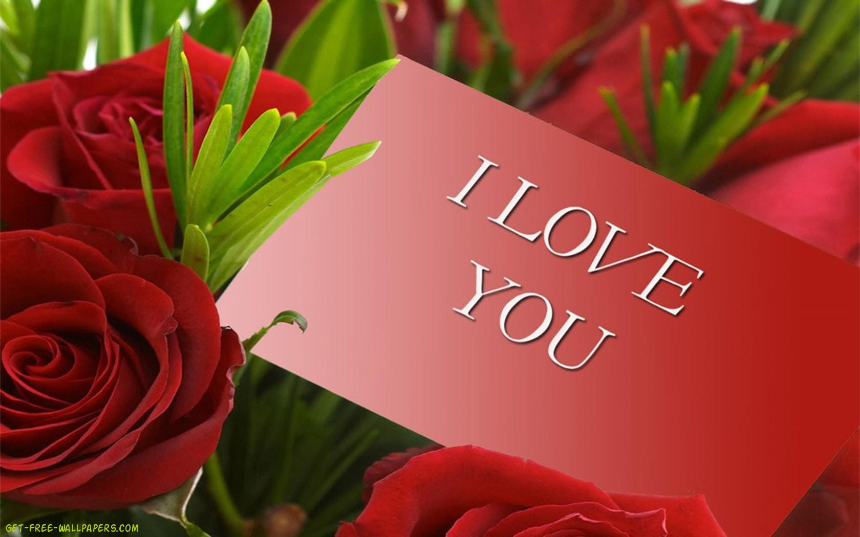 Free Red Roses Download Free Clip Art Free Clip Art On Clipart Library