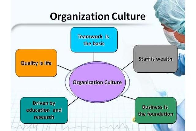 Case Study Organization Culture