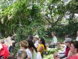 Healing Garden Shrine Master