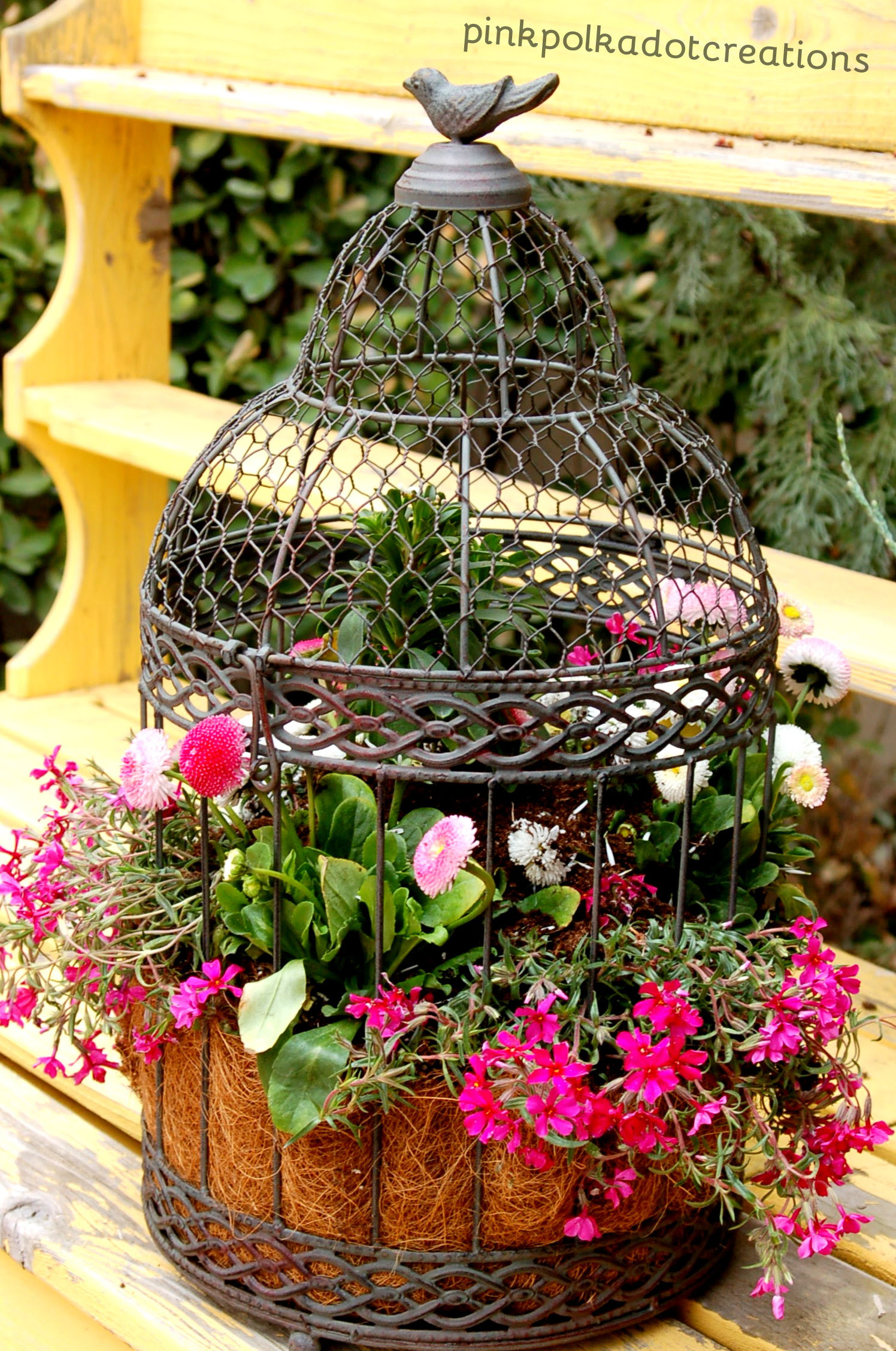 Backyard Gardening  Landscaping Tips And Ideas Growing Flowers Vegetables And Fruits
