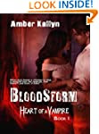 Bloodstorm (Heart of a Vampire, Book 1)