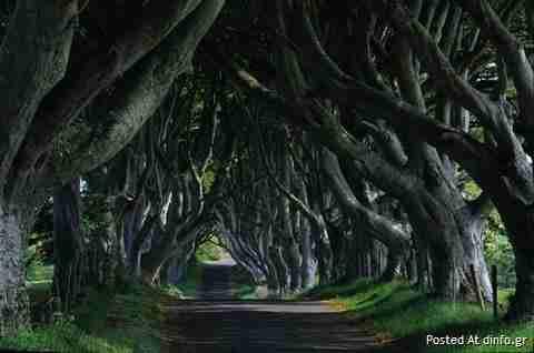 Ο πιο τρομακτικός δρόμος της Ιρλανδίας