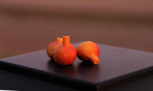 tiny_figs