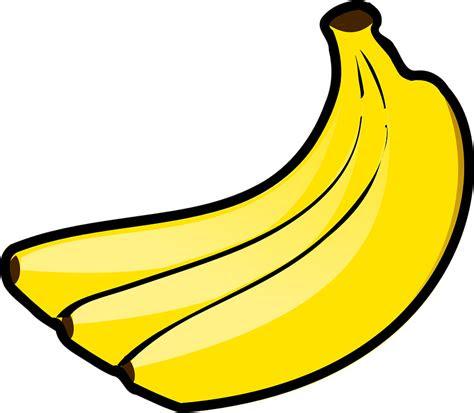pisang ikat buah  vector graphic  pixabay