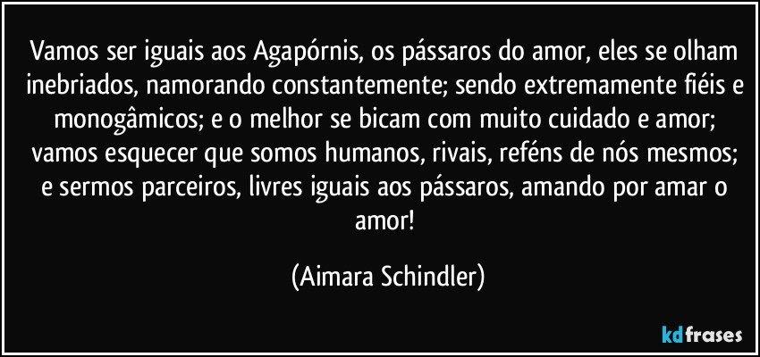 Vamos ser iguais aos Agapórnis, os pássaros do amor, eles se olham inebriados, namorando constantemente; sendo extremamente fiéis e monogâmicos;  e o melhor  se bicam com muito cuidado e amor; vamos esquecer que somos humanos, rivais, reféns de  nós mesmos; e sermos parceiros, livres iguais aos pássaros, amando por amar o amor! (Aimara Schindler)