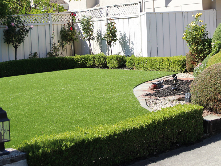 Synthetic Lawn Mission Canyon, California Landscape Ideas ...