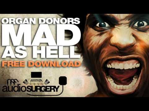 Organ Donors - Mad As Hell
