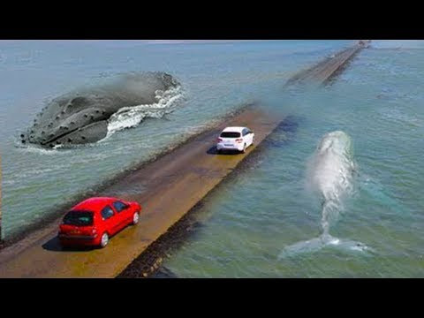 Most dangerous Road in the world (watch video)