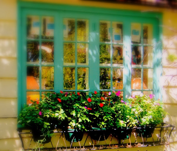 Mở cửa sổ đón vận may vào nhà | ảnh 1