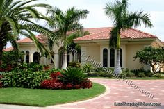 Tropical Landscaping on Pinterest