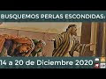 Busquemos Perlas Escondidas: 14 a 20 de Diciembre 2020
