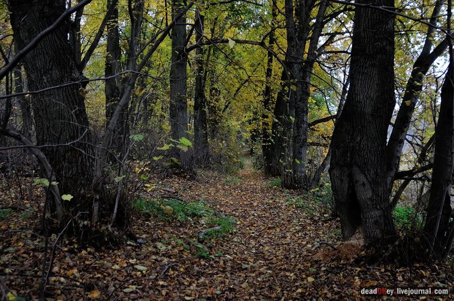 http://www.razumov.biz/foto/manor/glinki/small/glinki_007_deadokey.livejournal.com.jpg