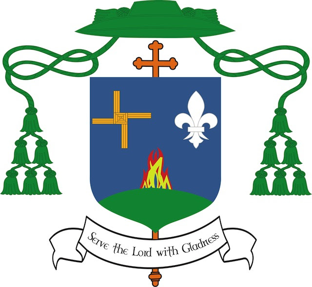 Image result for Bishop Denis Nulty coat of arms