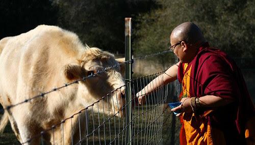 Venerable Geshe Phelgye blessing Howie