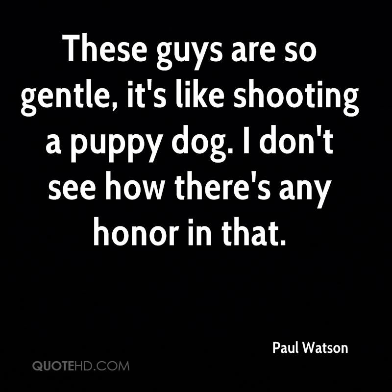 Paul Watson Quotes Quotehd