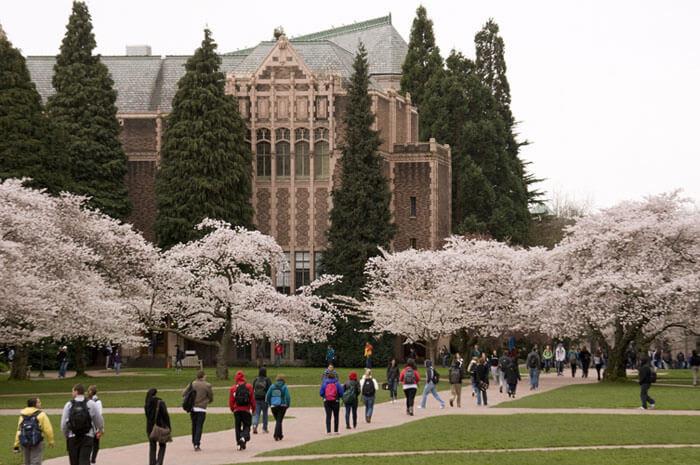 great online universities