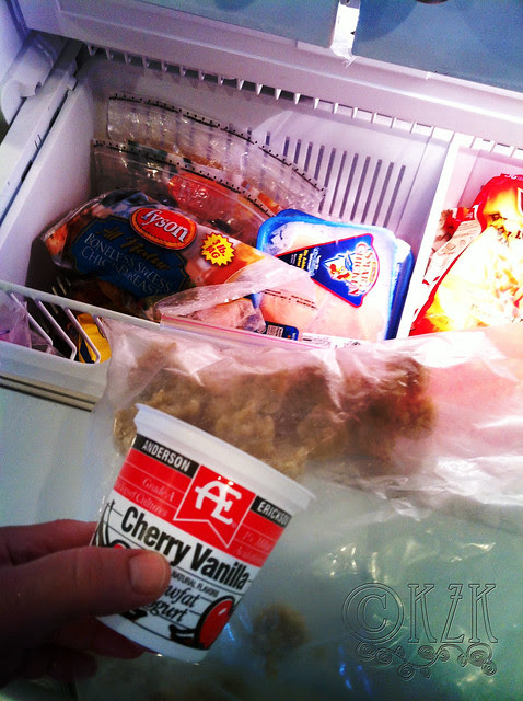 IMG_0686 frozen treat