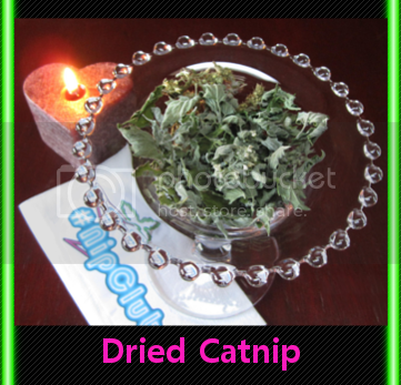 dried catnip candle