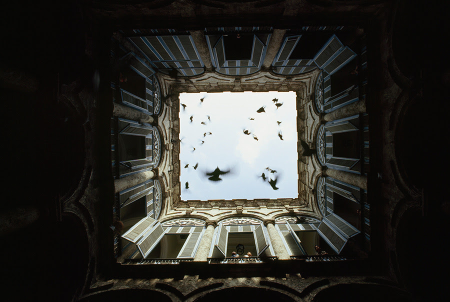A flock of birds fly up from an enclosed courtyard in Old Havana, December 1987.Photograph by James L. Stanfield, National Geographic