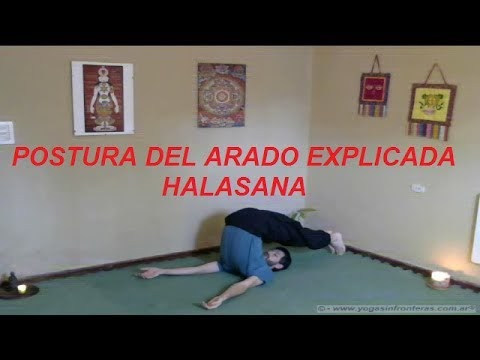 "Postura ""El Arado"" (Halasana) Clase explicativa completa."