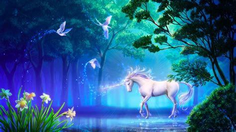 beautiful unicorn  forest fantasy computer desktop