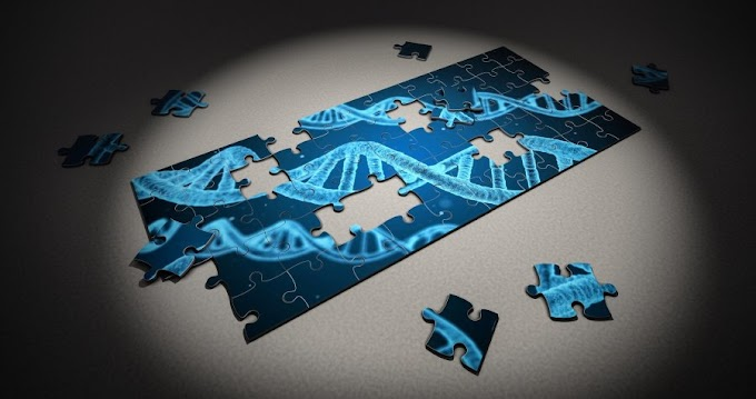 Why It Took 20 Years to 'Finish' the Human Genome—and Why There's Still More to Do