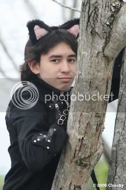 dias lean on tree