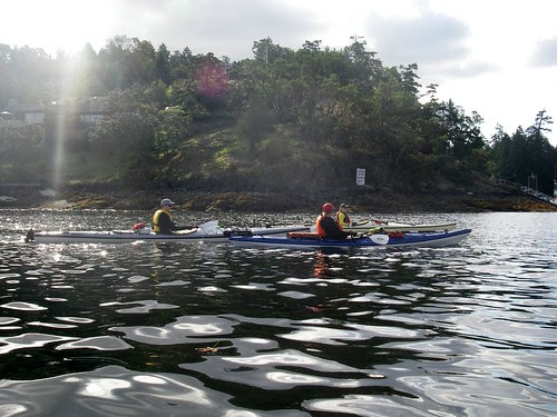 Kayaking Brentwood Bay I