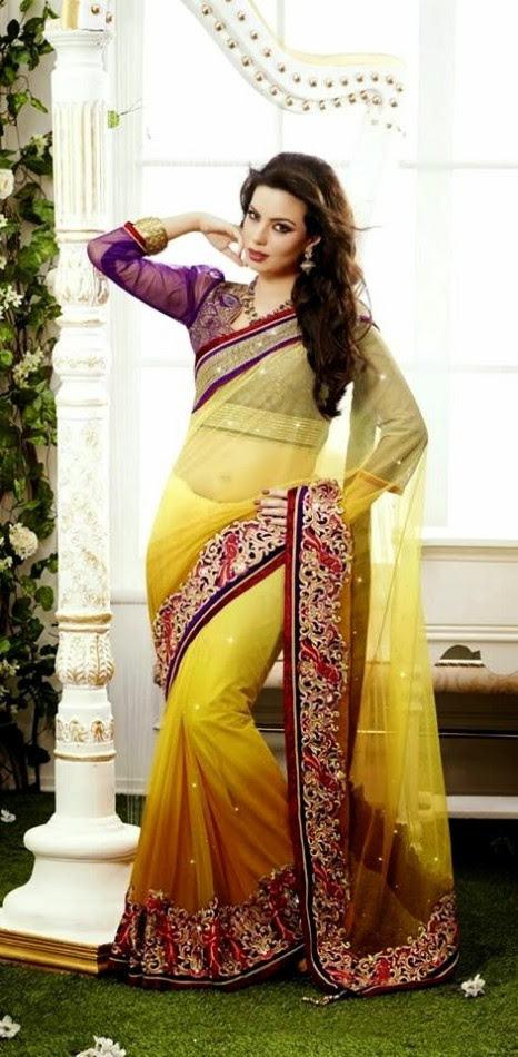 Bridal-Wedding-Rich-Heavy-Embroidered-Sarees-Designs-Lehanga-Style-Fancy-Sari-New-Fashion-16