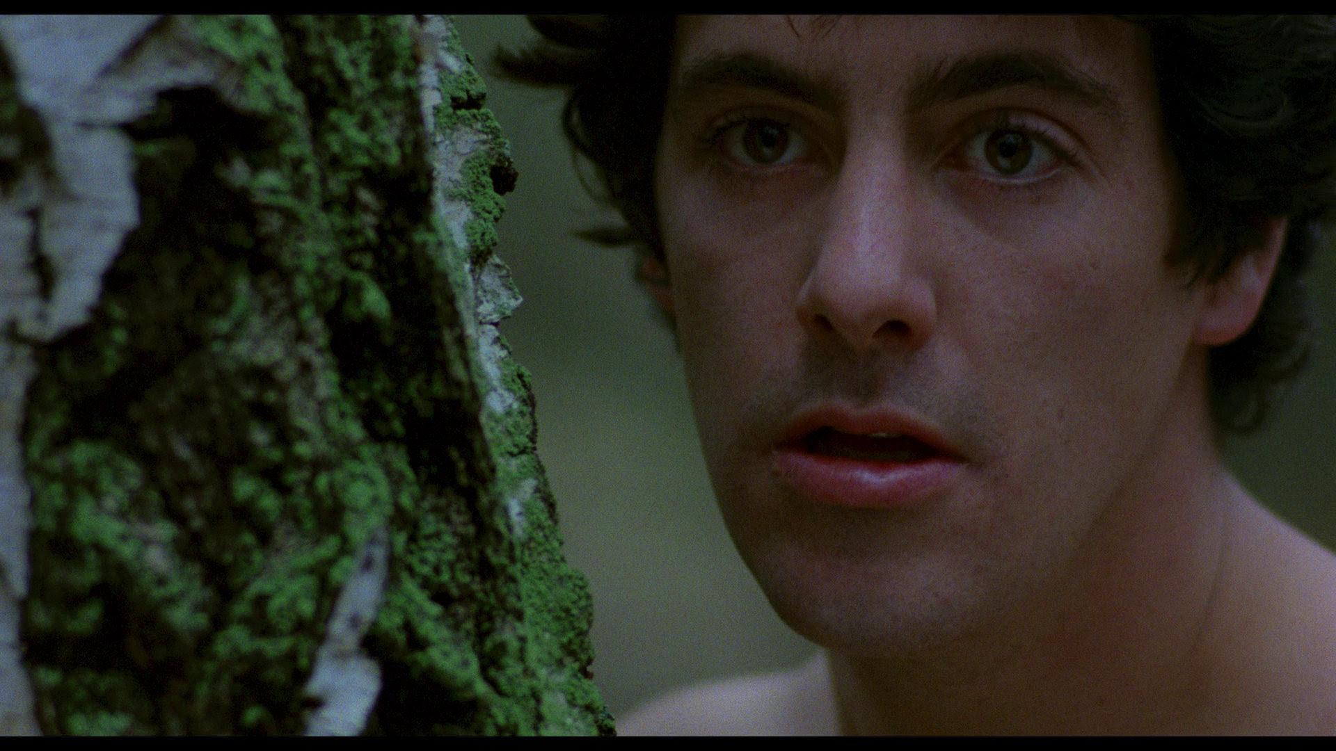 An American Werewolf In London Blu Ray David Naughton