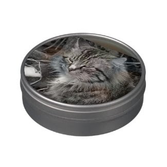 Maine Coon Cat in Winter Candy Tin Jelly Belly Candy Tin