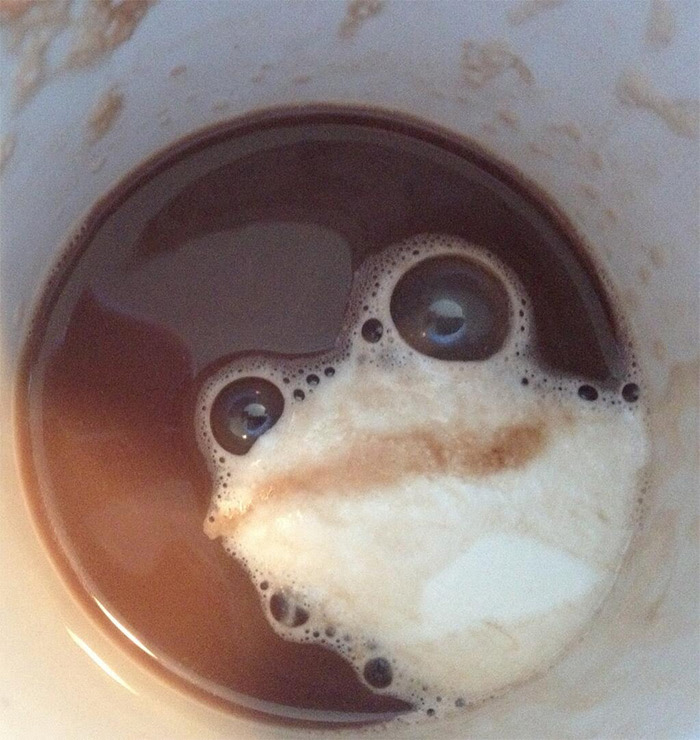 The @FacesPics Twitter Account Posts Fun Anthropomorphic Photos Containing Hidden Faces humor anthropomorphic