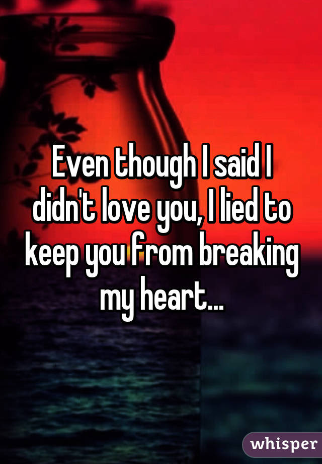 Even Though I Said I Didnt Love You I Lied To Keep You From Breaking