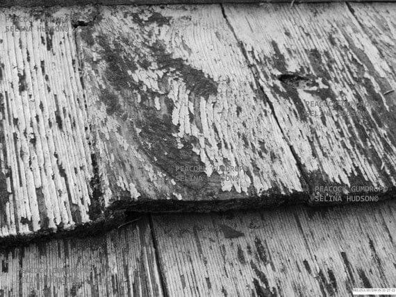 Beautiful Black and White wood photo - 8 x 10 frame Print Art Photography