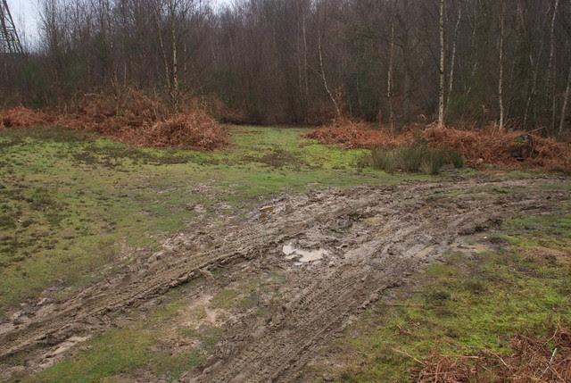 DSC_5482 mud