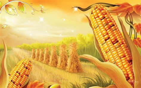 harvest desktop wallpaper wallpapersafari