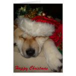 Cute akita dog asleep santa hat tinsel christmas greeting card